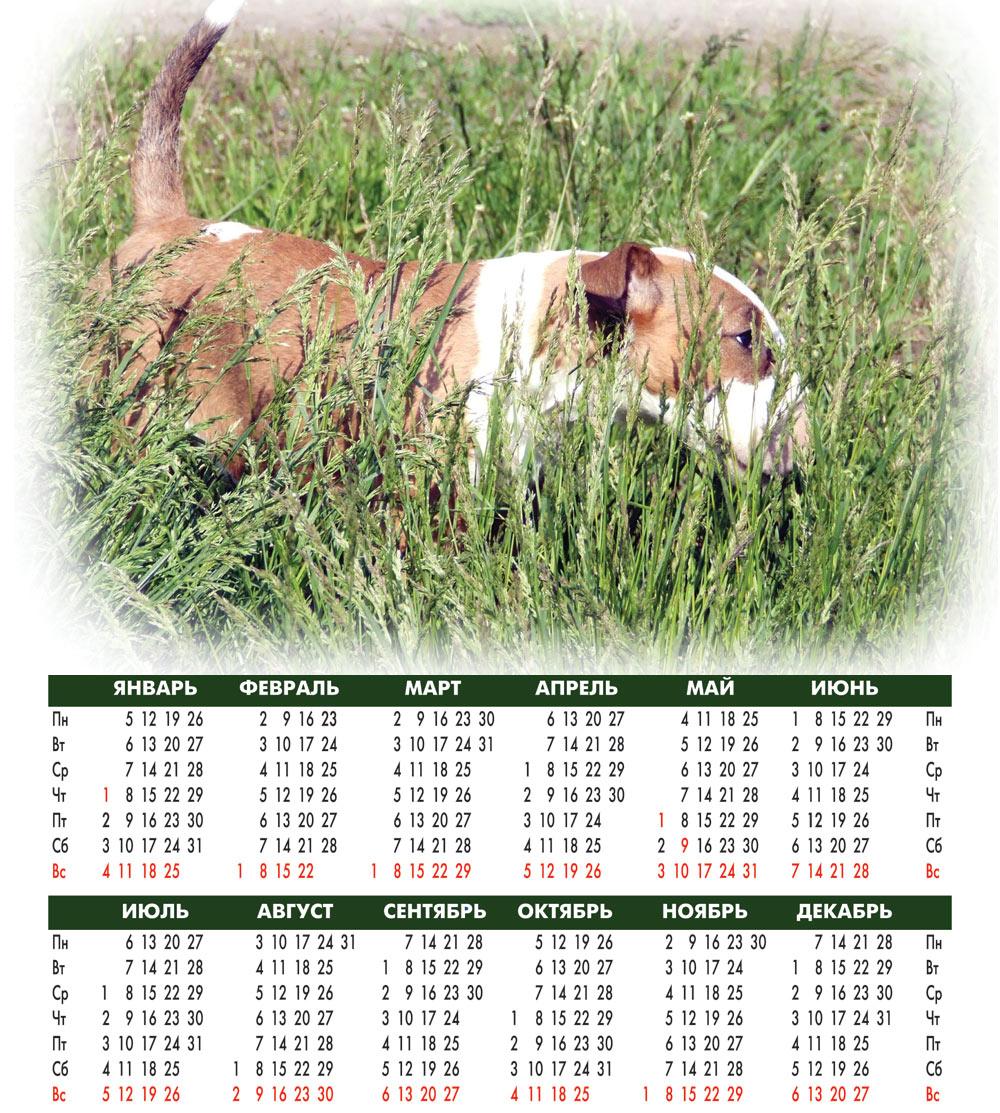 Календарь На 2009 Г